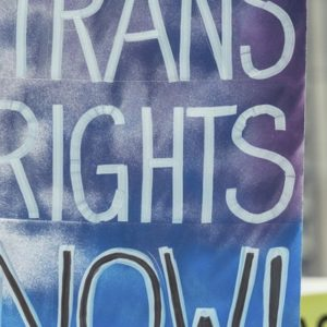 #ProtectTransHealth ~ Comment Today