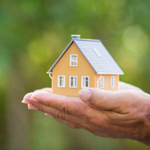 mini house held in palm of person's hand with blurred green plants background